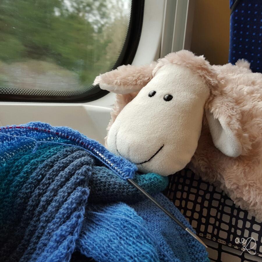 Chusta Arielka - pociąg z Katowic